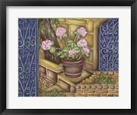 Framed California Pots Geranium
