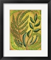 Fern 2 Framed Print