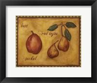 Framed Pears Bosc Red Anjou Seckel