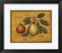 Framed Pears Forelle Bosc Comice