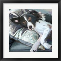 Framed Couch Collie