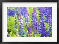 Framed Fluid Flowers VIII