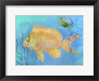 Framed Orange Fish Sea Life