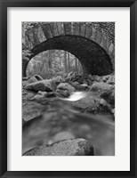 Framed Under the Bridge