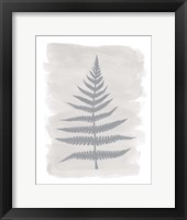 Framed Fern1 F