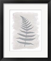 Framed Fern2 F