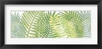Framed Palms 5 F
