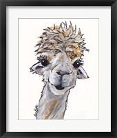 Framed Alpaca Angel