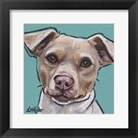 Framed Brazilian Terrier 1