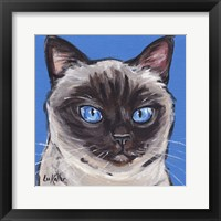 Framed Cat Siamese On Blue