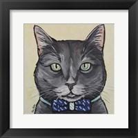 Framed Cat Smokey Gray Tabby