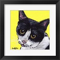 Framed Cat Tuxedo