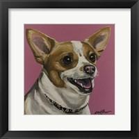 Framed Chihuahua Bella