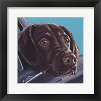 Framed Chocolate Lab In Car
