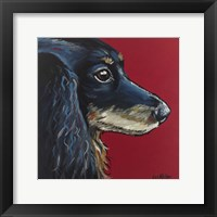 Framed Dachshund Expressive Red