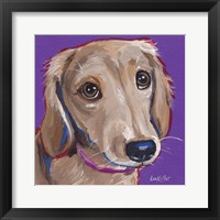 Framed Daschund Purple