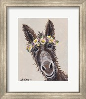 Framed Donkey Rufus Flower Crown