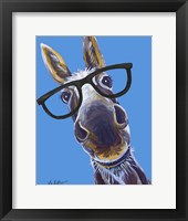 Framed Donkey Snickers Glasses