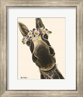 Framed Donkey Snickersflower Crown Cream