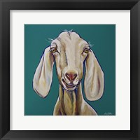 Framed Goat On Teal