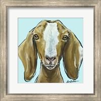 Framed Goat Square Blue