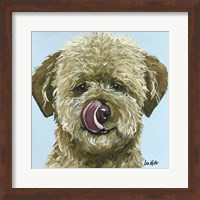 Framed Goldendoodle Tongue Out