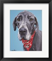 Framed Great Dane Jake