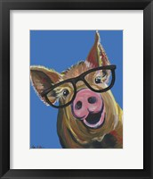 Framed Pig Wilbur Glasses Blue