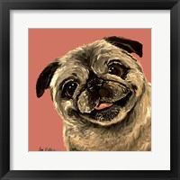 Framed Pug On Peach
