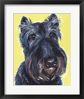 Framed Schnauzer Yellow Expressive