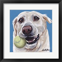 Framed Yellow Lab Ball 2