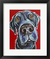 Framed Black Lab Arlo