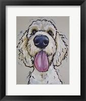 Framed Goldendoodle Murphy