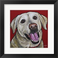 Framed Lab Marley Yellow Labrador