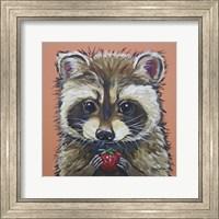 Framed Raccoon Callie