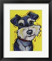Framed Schnauzer Mr Foo