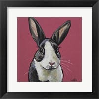 Framed Rabbit Gigi