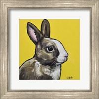 Framed Rabbit Louie