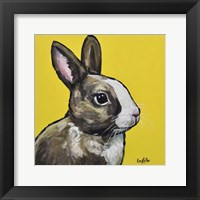 Framed Rabbit Louie