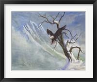 Framed Winter Perch