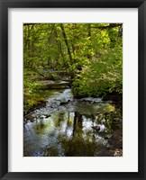 Framed Landscape 38