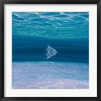 Framed Blue Angels Blue Sea