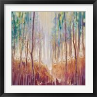 Framed Forest Souls
