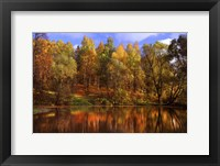 Framed Autumn Reflections
