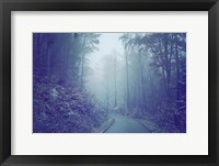 Framed Blue Woods Misty Way