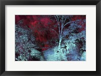 Framed Moonlight Forest