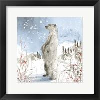 Framed Standing Polar Bear