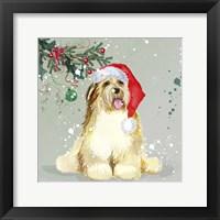 Framed Dog In Christmas Hat