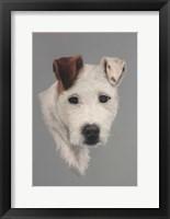 Framed Pastel Dog