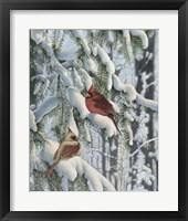Framed Winter Visitors